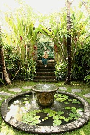 RedDoor Bali: red door bali