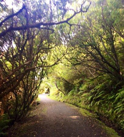 Lands End : Stirling Point Walking Trails