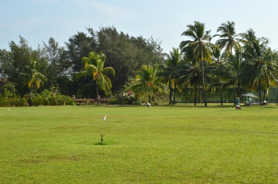 Kenilworth Resort & Spa: Lawn Area