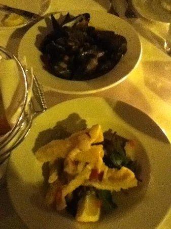 Mezzo Ristorante & Lounge: mussel and calamari appetizers