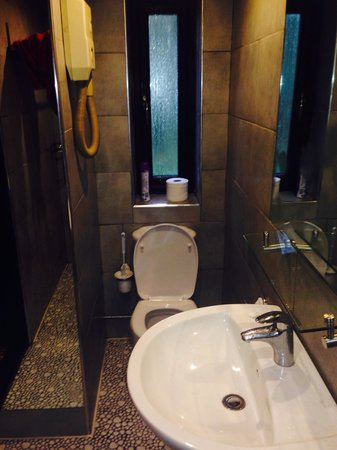 Foxwood Guest House: Wetroom