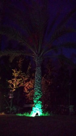 Vincci Nozha Beach Resort: vorm Hotel