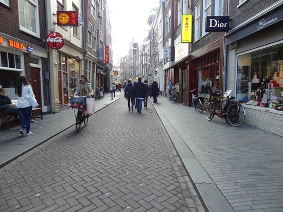 amsterdam city toursday tours amsterdam
