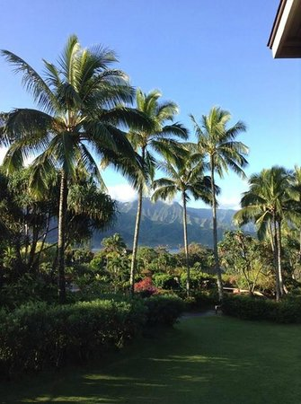 Hanalei Bay Resort : View from room