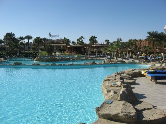 Beach Albatros Resort: Sehr schöner Pool