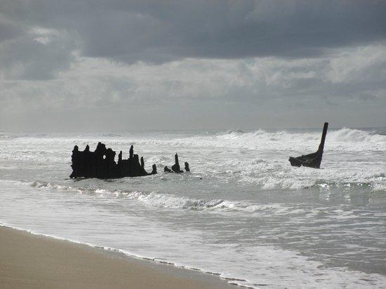 Portobello By The Sea: Dicky Beach Ship Wreck