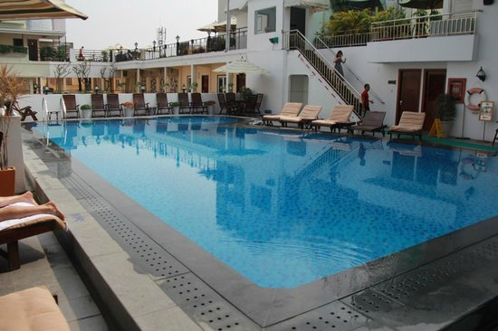 Rex Hotel: Rooftop pool