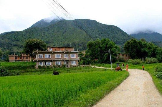 View of Homestay Nepal
