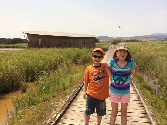 Tamar Island Wetlands: Perfect family destination and free too