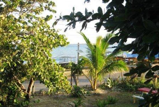 Mi Yard Resort: View from the Veranda