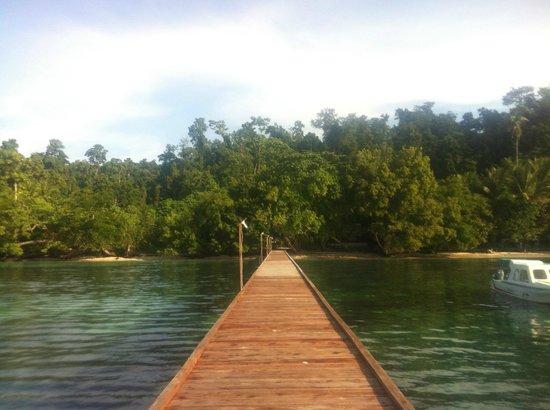 Marley Beach Bungalows : Dock