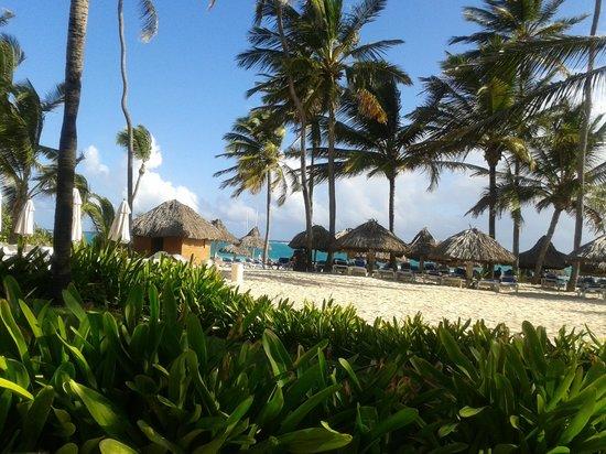 Tropical Princess Beach Resort & Spa: plage