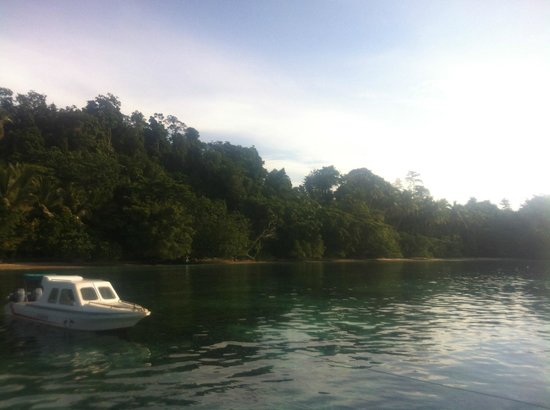 Marley Beach Bungalows : View