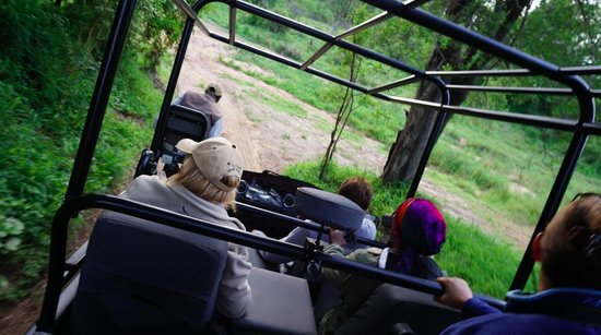 Dulini Lodge: Traversing the bush