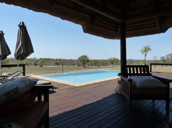 Nkorho Bush Lodge: Zona de piscina