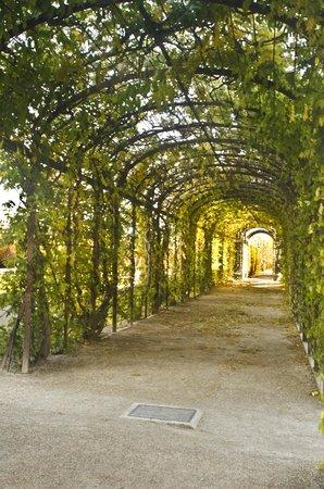 Gärten von Schönbrunn: Archway