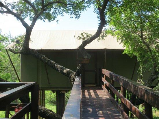 "Kapama Buffalo Camp : Unbelievable Luxury in a ""Tent"""
