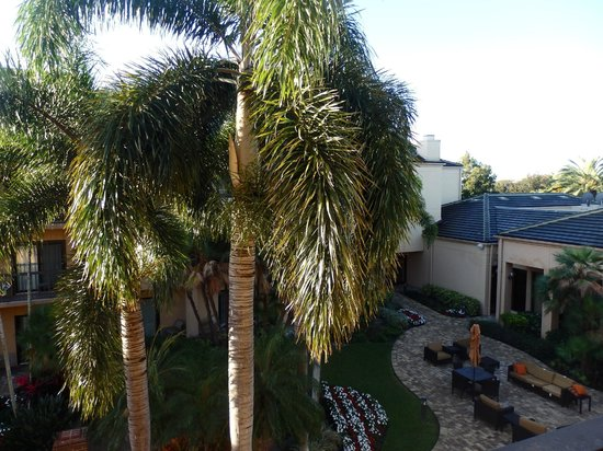 Courtyard West Palm Beach: Palm trees right outside our balcony