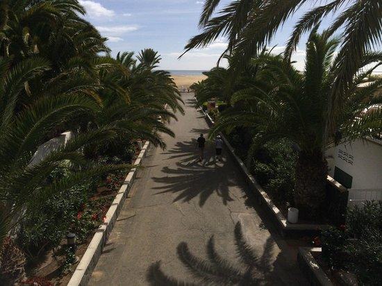 Hotel Riu Palace Maspalomas: il viale che porta dall'ingresso dell'hotel alle dune