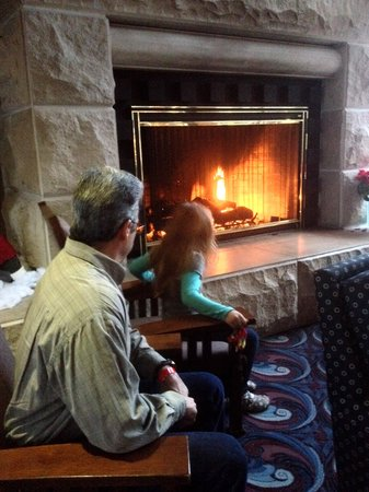 Maumee Bay Lodge and Conference Center: one of fireplace areas