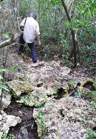 Varahicacos Ecological Reserve: No running on this part of the trail!