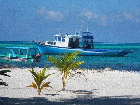Cinnamon Hakuraa Huraa Maldives: excursions en bateau
