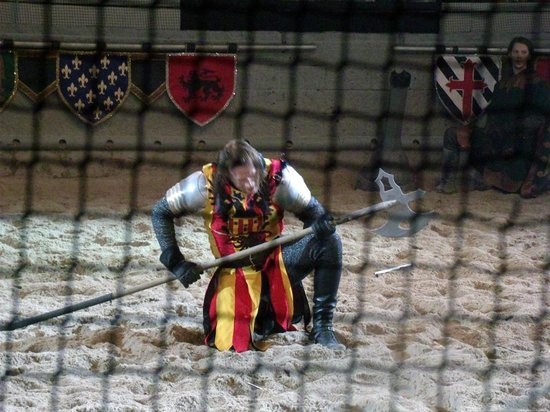 Medieval Times Dinner & Tournament: Our knight, Red and Yellow!
