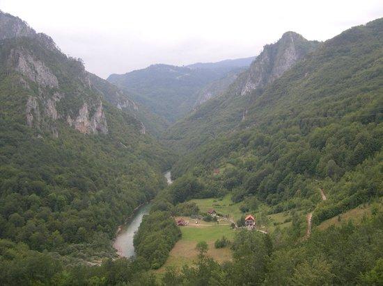 Tara Bridge : долина Тары