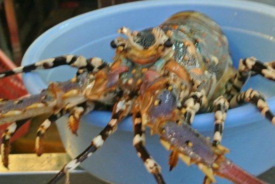 Orkid Ria Seafood Restaurant: 海老