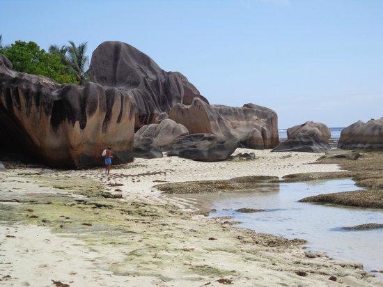 Pension Michel: Granitklipporna på La Digues sydsida