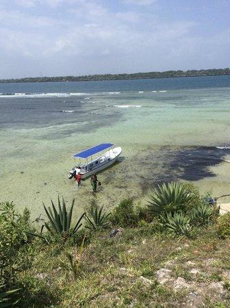 Paradise Divers Dive Center: Bateau rapide pour la plongée