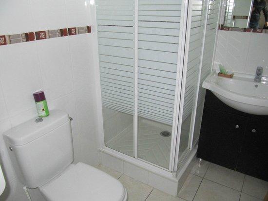 Hotel Aquitaine: ванна