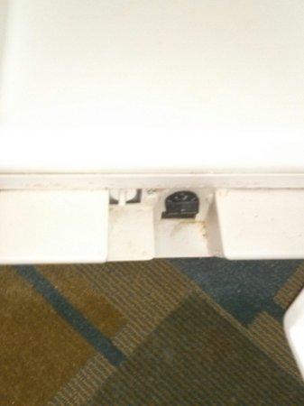 La Quinta Inn & Suites Ocala: Refrigerator