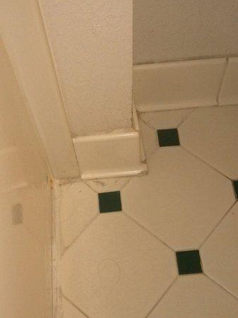 La Quinta Inn & Suites Ocala: Corners of bathroom