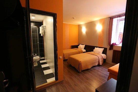 Uninn Hotel Vnukovo : Один из номеров отеля