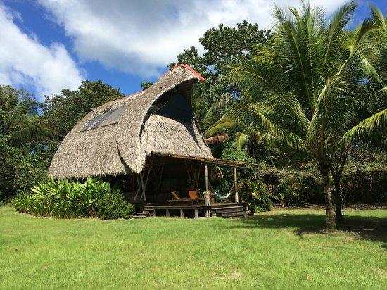 Boca Sombrero: Troika house.