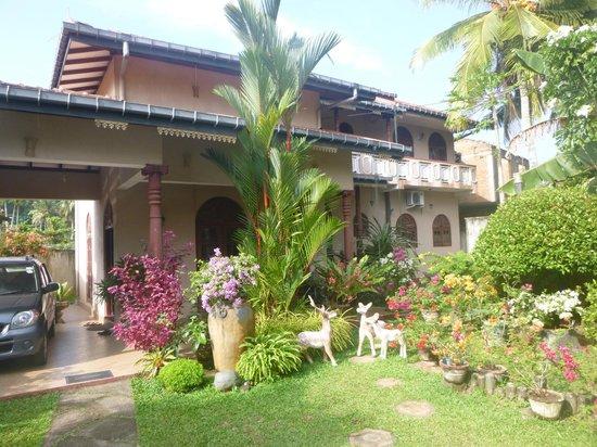 Angel Rest House : garden