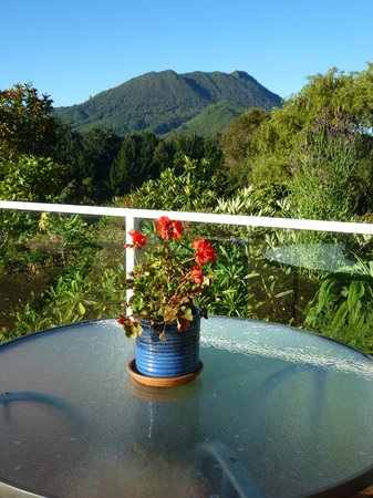 Kauri Point : Huge deck area with view of volcano