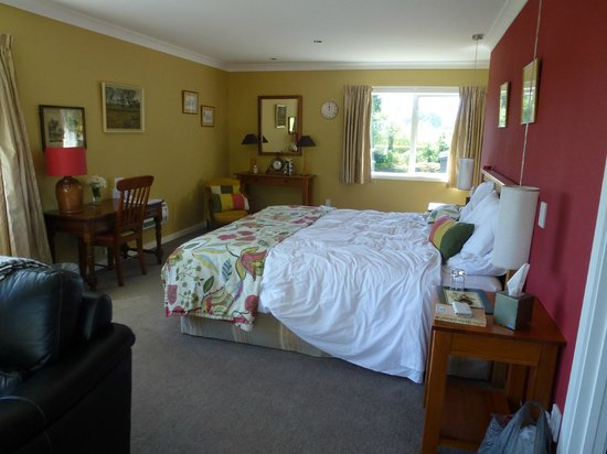 Kauri Point : Lovely large room