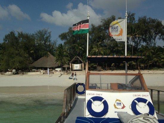 Diani Marine Divers Village: Club de plongée, un super spot