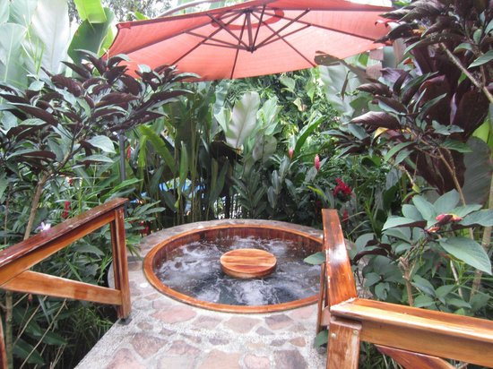 Nayara Resort Spa & Gardens : Hidden Hot tubs everywhere were so romantic