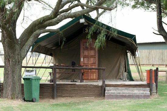 Wildside Tent Camp Lion Park : the tent