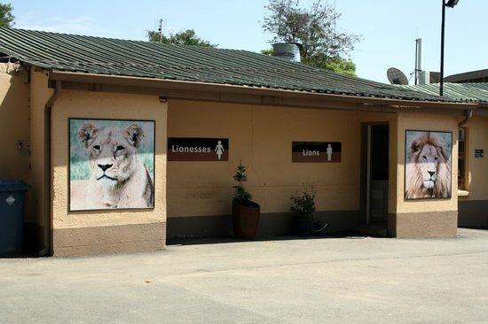 Wildside Tent Camp Lion Park: Where do I have to go?