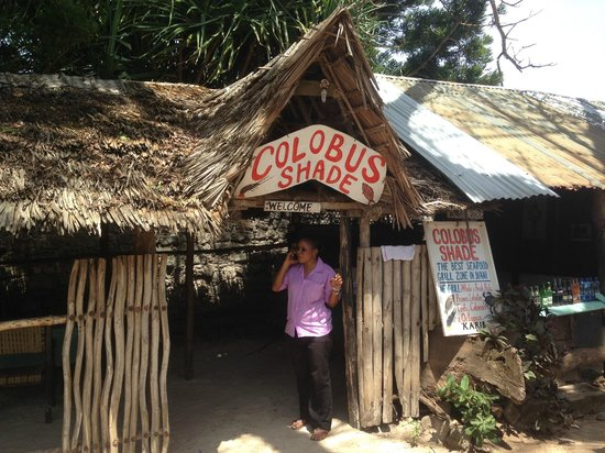 Diani Marine Divers Village: Colobus Shade