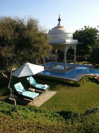 Tree of Life Resort & Spa Jaipur : common pool