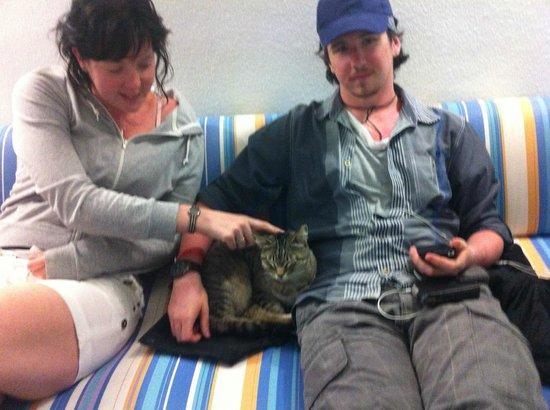 Apartamentos THe Morromar: Cat