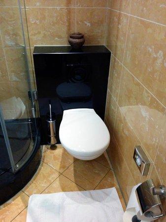 Savoy Hotel: Die Toilette - viel zu Nah an der Wand.