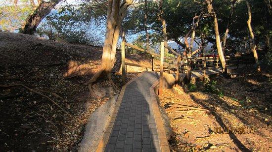 Occidental Grand Papagayo by Barcelo: Beach walkway