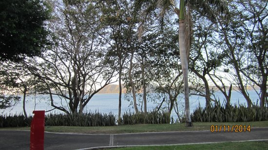 Occidental Grand Papagayo by Barcelo: View from room 2003