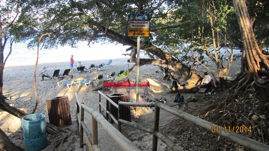 Occidental Grand Papagayo by Barcelo: Beach entry
